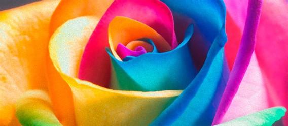 9/16(日)【沖縄開催】色を楽しむお茶会 「色を活かして自分らしく生きる♪」