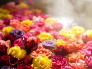 4/23(土)Rose:美しく華やかに ~成りたい自分に成るための色を見つける in ヴァグリエ~