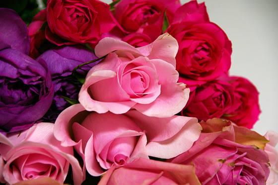 4/19(水)自分らしく輝くためのFlower&Colorレッスン「女神のRoseアレンジメントで自分自身を美しく咲かせましょう♪」