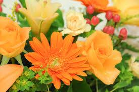 雨の日もこころは、オレンジ色の気分で。