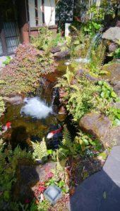お庭の光景にも色彩心理効果。