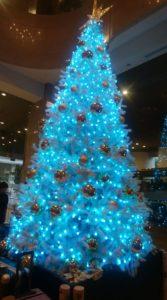 ブルーのクリスマスツリーを見ながら。