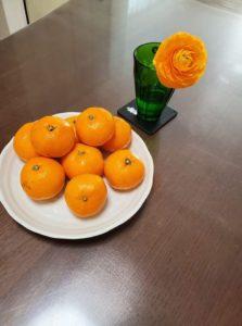 オレンジ色でお出迎え。